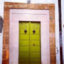 Tunisian old door 34