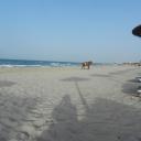 Djerba, 09.06.2012, 18.08 h SENTIDO Djerba Beach