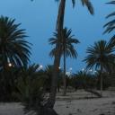 Djerba, 07.06.2012, 19.38 h @ Zone Touristique