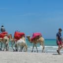 Djerba, 02.06.2012, 11.13 h Aldiana Djerba Atlantide