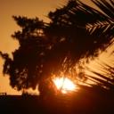 Djerba, 05.06.2012, 19.08 h
