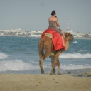 Djerba, 09.06.2012, 18.14 h SENTIDO Djerba Beach