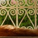 Djerba, 05.06.2012, 07.22 h (Katze Malek schläft auf dem Küchenfenster-Vorsprung in der Morgensonne ...)