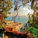 Sidi Bou Saïd _ Tunisia -) Share it!