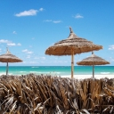 Des paillotes en Tunisie