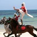 cavalier tunisien