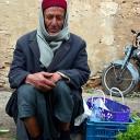 Tunisians 9
