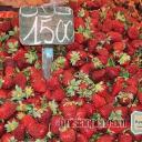 Marché Tunisien 17