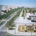 Tunis 25