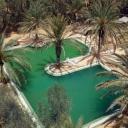 Ksar Ghilane est une oasis du sud de la Tunisie située sur la limite est du Grand Erg Oriental