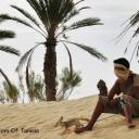 Тунис - Страна и ее люди 41