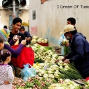 Тунис - Страна и ее люди 84
