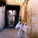 Тунис - Страна и ее люди 98