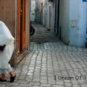 Тунис - Страна и ее люди 49