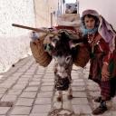 Тунис - Страна и ее люди 56