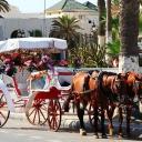 Hello Sousse, Tunisia 21