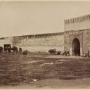 Tunis 1890 sd