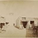 Ariana 1890