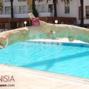 Hotel Ruspina 4* _11a